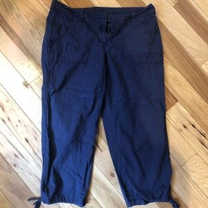 Ann Taylor the Loft Capri pants